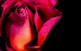 For hopeless romantics: 10 new Romance eBooks to read - Inkitt